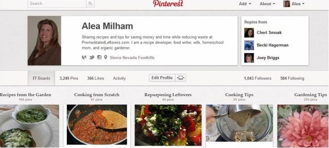 Use Pinterest to increase your blog traffic